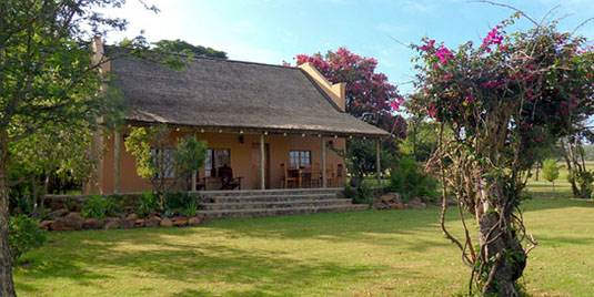 Kololo Game Reserve Standard 4 Bed Chalet Self catering Fully Catered Accommodation malaria-free Waterberg Big 5 South Africa