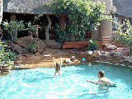 Swimming pool - Nedile Lodge